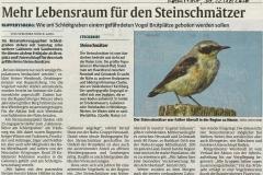 Gabionen-Presseartikel-Rheinpfalz